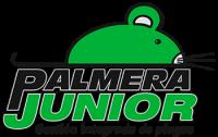 Palmera Junior
